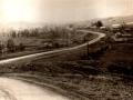 Большая Соснова 1964 г.